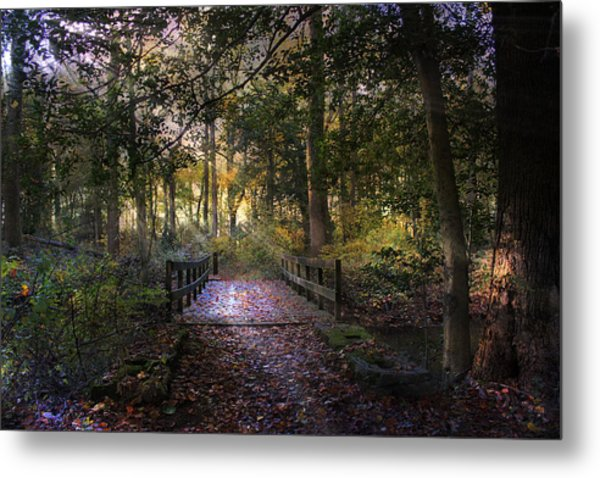 Beyond The Wooden Bridge Metal Print