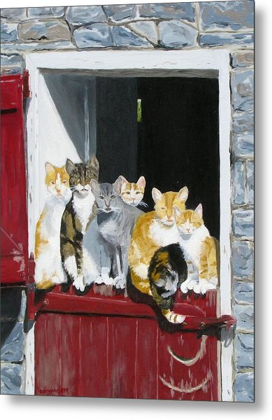 Biddles Barn Kitties Metal Print