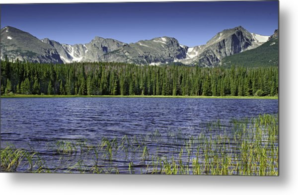 Bierstadt Lake Metal Print by Tom Wilbert