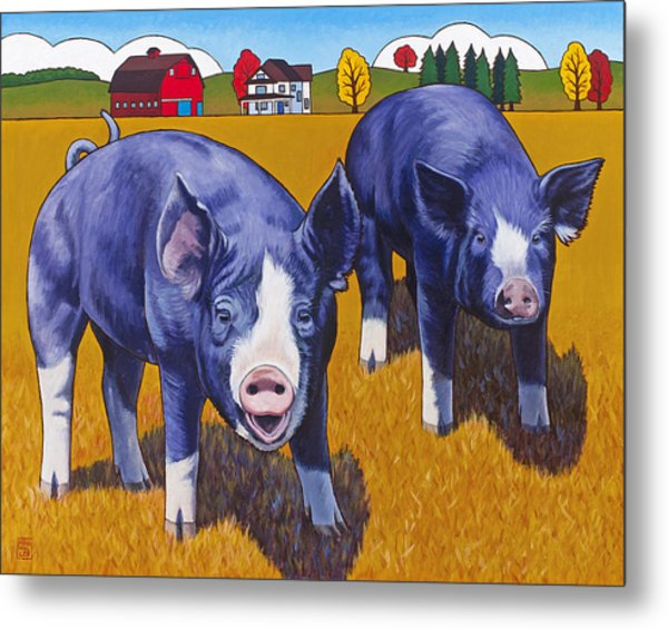 Big Pigs Metal Print
