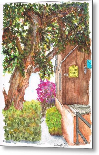 Big Tree At The Bead Shop, Laguna Beach, California Metal Print