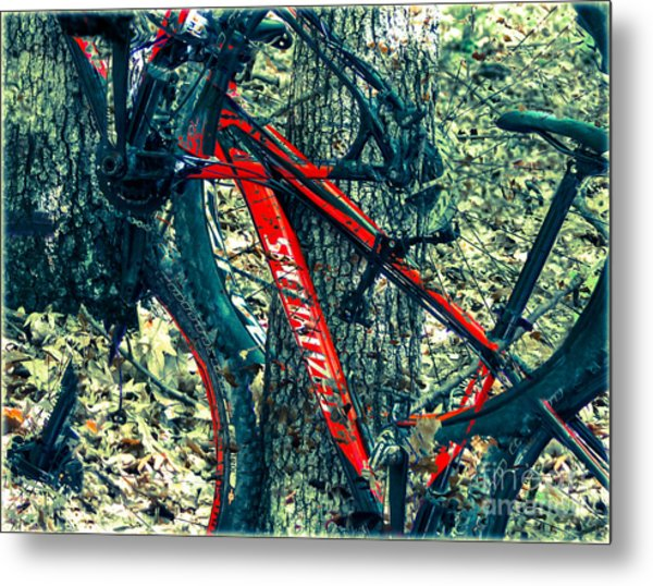 Bike By Wilderness  Metal Print by Steven Digman