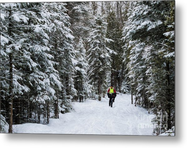 Biking The Wilderness Metal Print