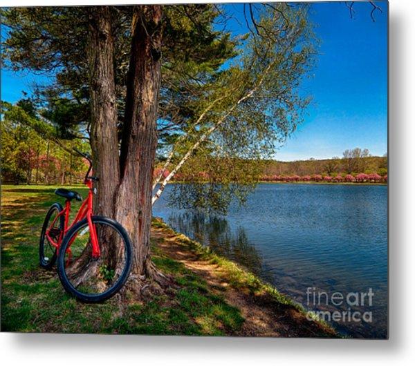Biking To Horseshoe Lake Metal Print