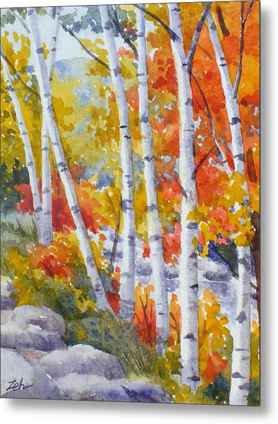 Birches Along The River Metal Print