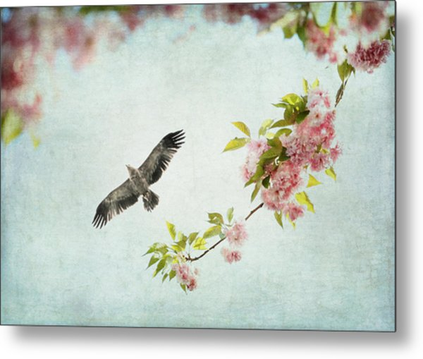 Bird And Pink And Green Flowering Branch On Blue Metal Print