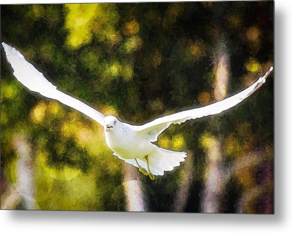 Bird Fly With Colors Metal Print by Saibal Ghosh
