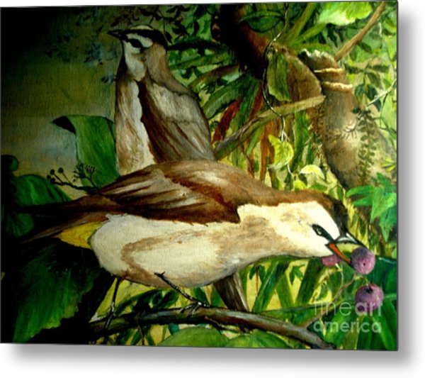 Bird From Bali  Metal Print