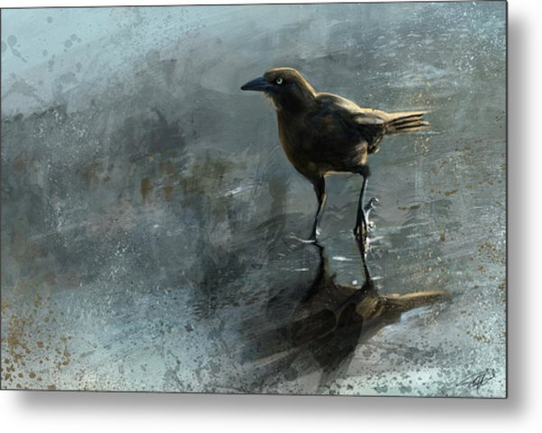 Bird In A Puddle Metal Print