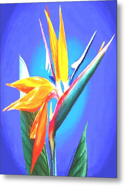 Bird Of Paradise Flower Metal Print