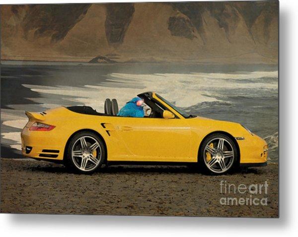 Bird On Porsche 911 Metal Print