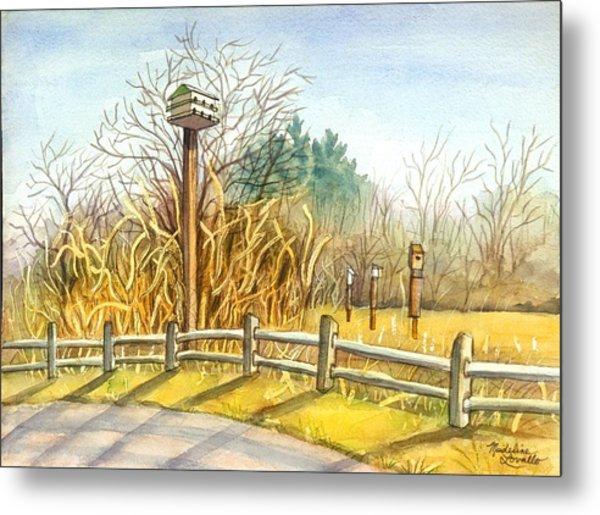 Birdhouse At Gateway National Park Metal Print