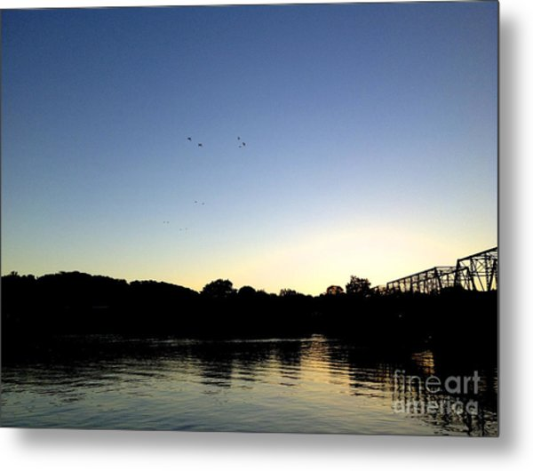 Birds And Blues Metal Print