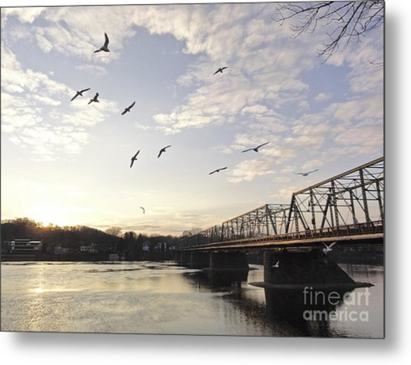 Birds And Bridges Metal Print