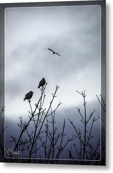 Birds For Breakfast Metal Print