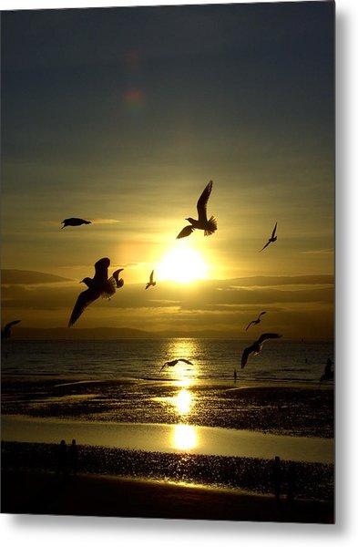 Birds Gathering At Sunset Metal Print