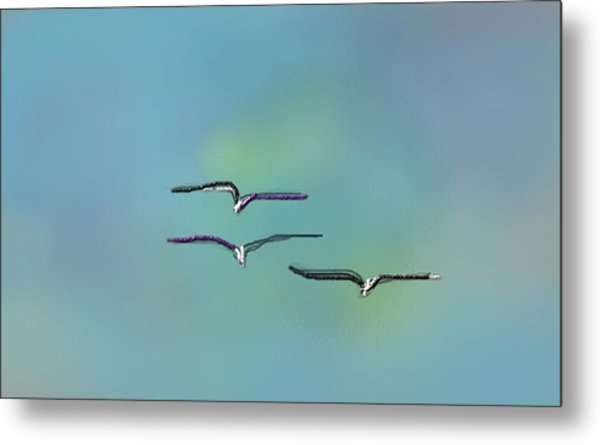 Birds In Flight Metal Print by Greg Stew