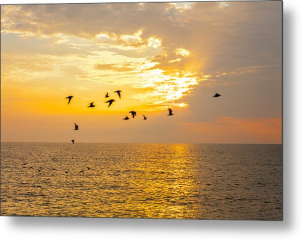 Metal Print featuring the photograph Birds In Lake Erie Sunset by David Coblitz
