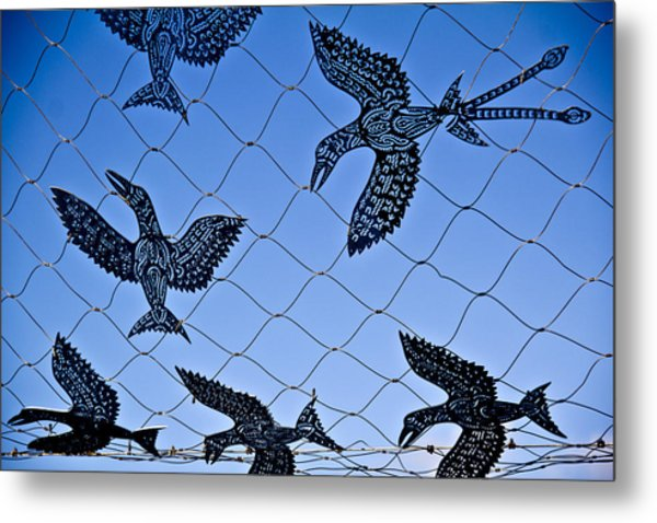 Birds Of Paradise Caught In A Net Metal Print