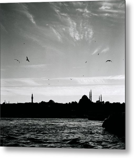 Birds Over The Golden Horn Metal Print