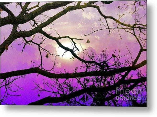 Birds Roosting For Night Metal Print