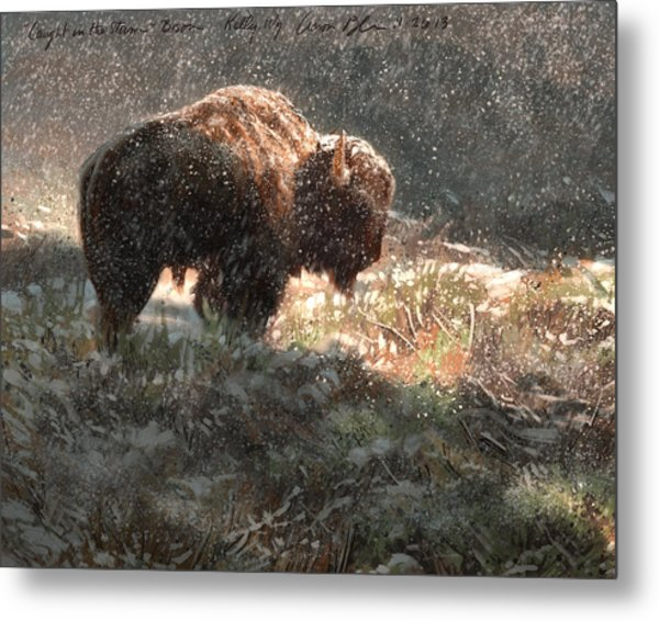 Bison In The Snow Metal Print