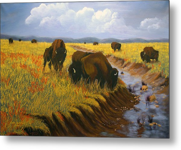 Bison Still Roam The Plains Metal Print