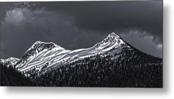 Black And White Deer Mountain  005 Metal Print