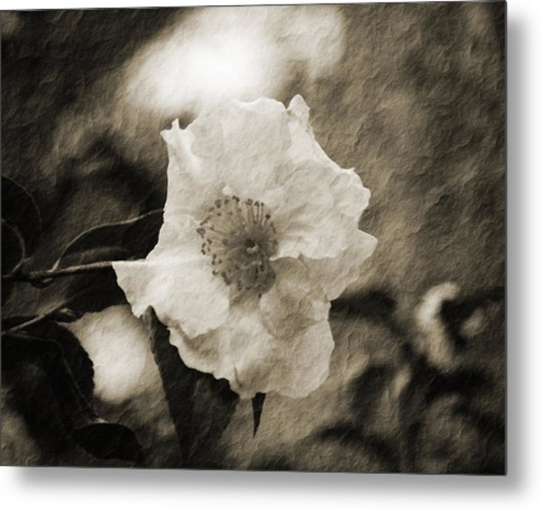 Black And White Flower With Texture Metal Print