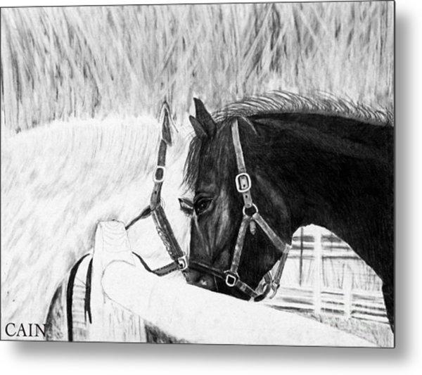Black And White Horses Art Print Metal Print