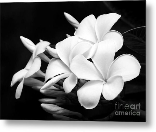 Black And White Lightning Metal Print