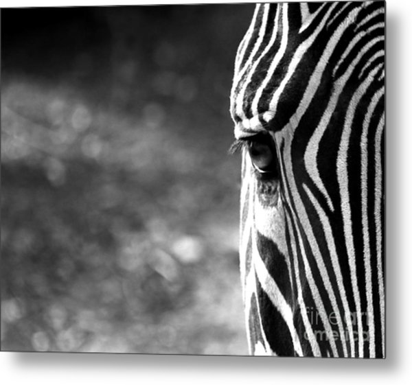 Black And White On Black And White Metal Print