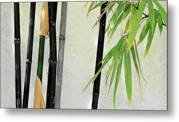 Black Bamboo Sarasota IIi Metal Print