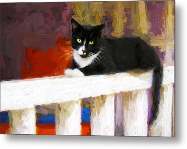 Black Cat In Color Series 2 Metal Print