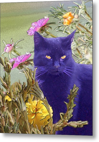 Black Cat Lurking In The Portulaca Metal Print