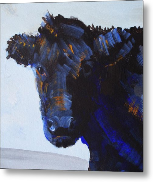 Black Cow Head Metal Print