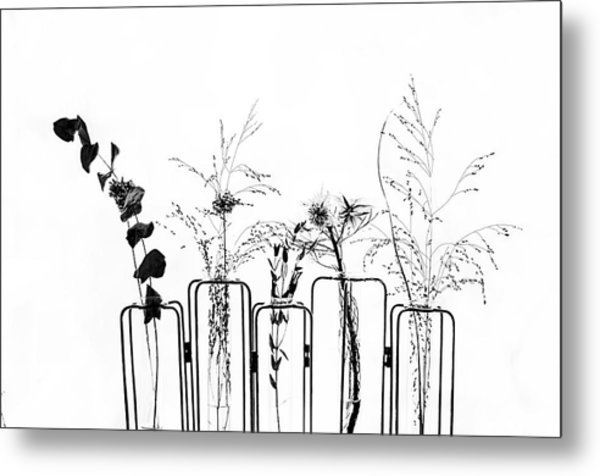 Black Flowers On White Background Metal Print by #name?