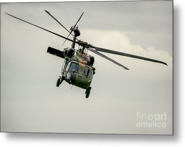 Black Hawk Swoops Metal Print