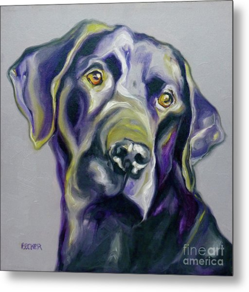 Black Lab Prize Metal Print