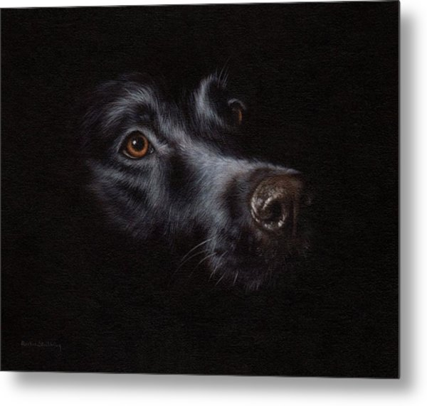 Black Labrador Painting Metal Print