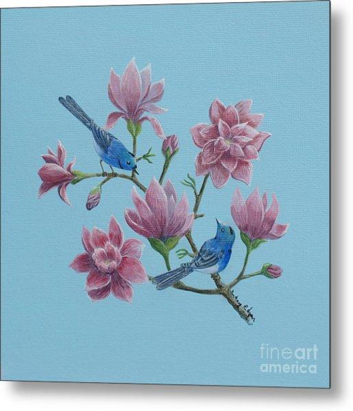 Black Naped Blue Flycatchers In Magnolias Metal Print