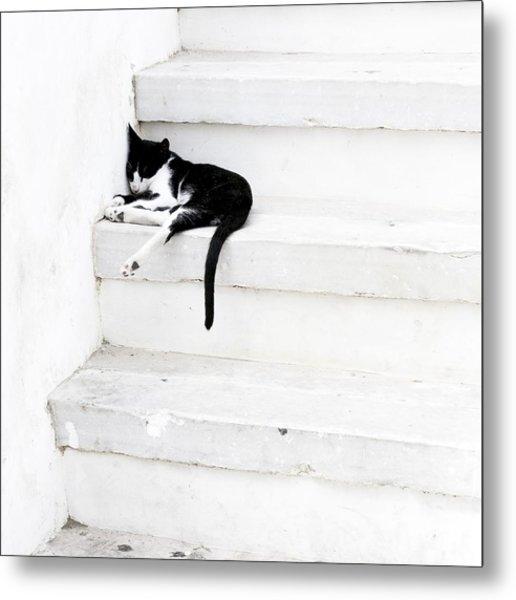 Black On White 2 Metal Print