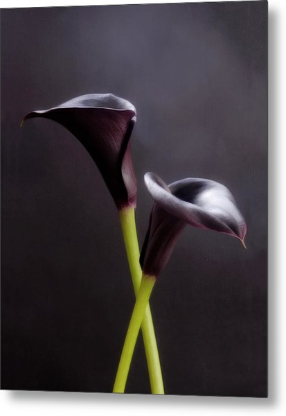Black And White Purple Flowers Art Work Photography Metal Print