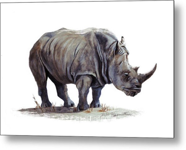Black Rhinoceros Metal Print