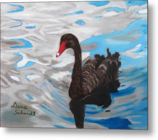 Black Swan Swimming Lake Eola Metal Print