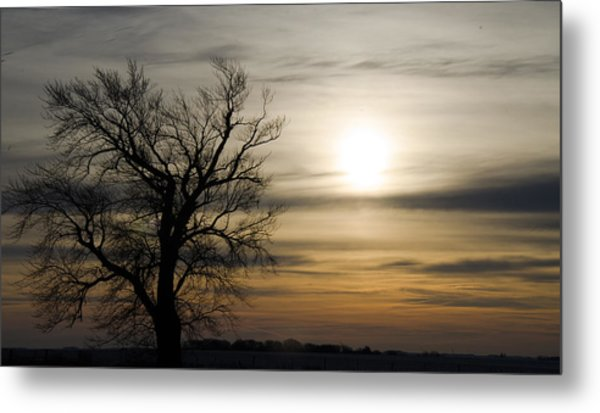 Black Tree At Sunrise Metal Print by Dan  Meylor