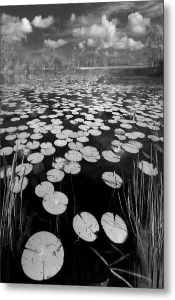 Black Water Metal Print