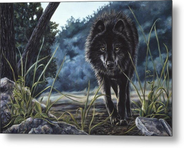 Black Wolf Hunting Metal Print