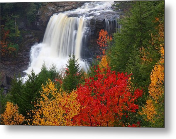 Blackwater Falls In Autumn Metal Print