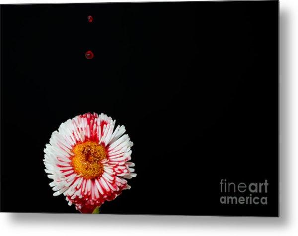 Bleeding Flower Metal Print